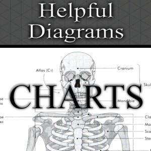 Charts.2