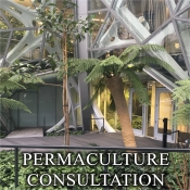 Picture of PERMACULTURE CONSULT